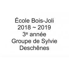3e année - Sylvie Deschênes