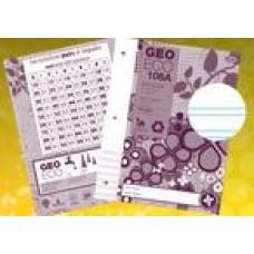 Cahier de projet Géo ECO 106A